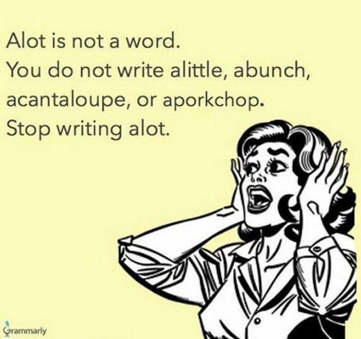 """57 Grammar Memes - """"Alot is not a word. You do not write alittle, abunch, acantaloupe, or aporkchop. Stop writing alot."""""""