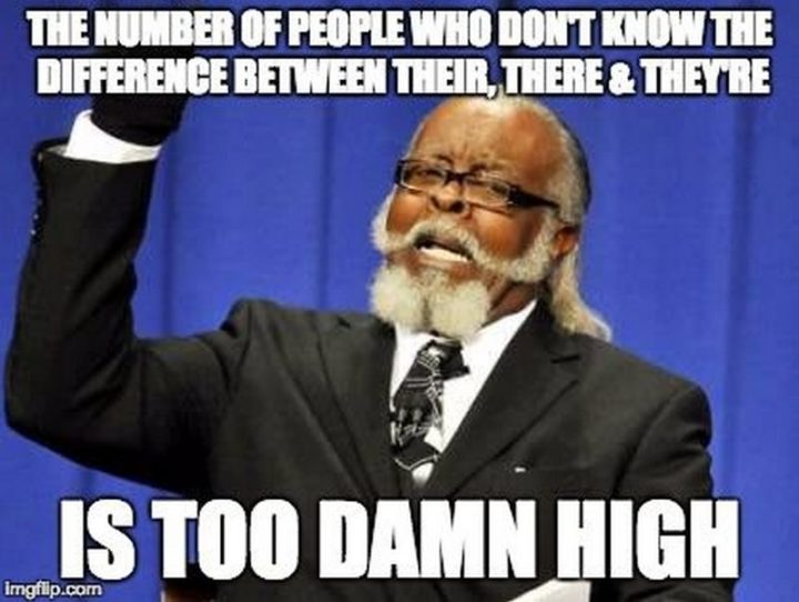 """""""The number of people who don't know the difference between their, there, and they're is too damn high."""""""
