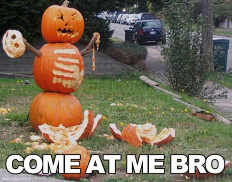 """""""Come at me bro."""""""