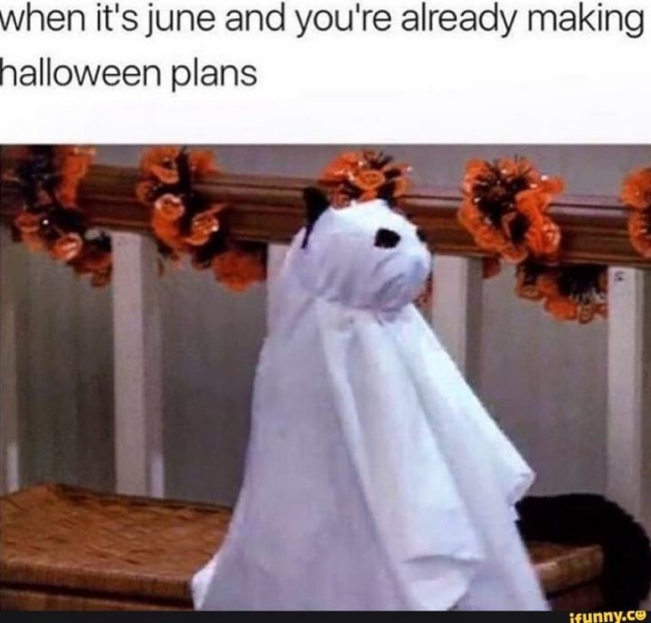 """""""When it's June and you're already making Halloween plans."""""""