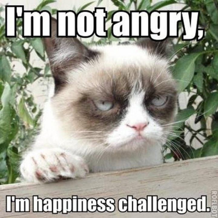 """""""I'm not angry, I'm happiness challenged."""""""