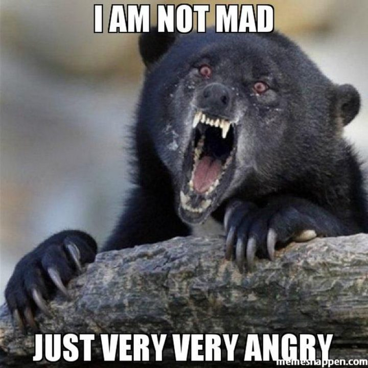 """""""I am not mad. Just very, very angry."""""""