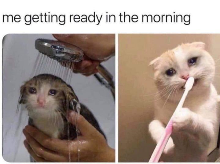 """""""Me getting ready in the morning."""""""