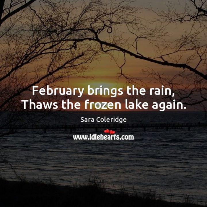 """February brings the rain, Thaws the frozen lake again."" - Sara Coleridge"