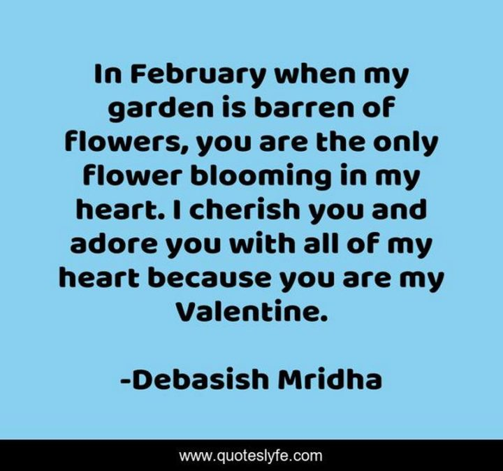 """""""In February when my garden is barren of flowers, you are the only flower blooming in my heart. I cherish you and adore you with all of my heart because you are my Valentine."""" - Debasish Mridha"""