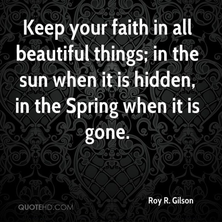 """""""Keep your faith in beautiful things; in the sun when it is hidden, in the Spring when it is gone."""" - Roy R. Gilson"""