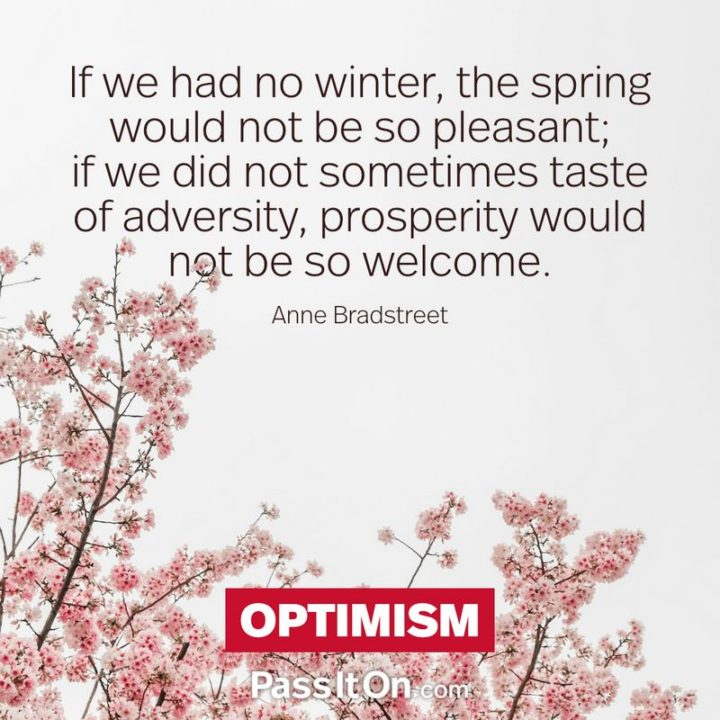 """""""If we had no winter, the spring would not be so pleasant: if we did not sometimes taste of adversity, prosperity would not be so welcome."""" - Anne Bradstreet"""