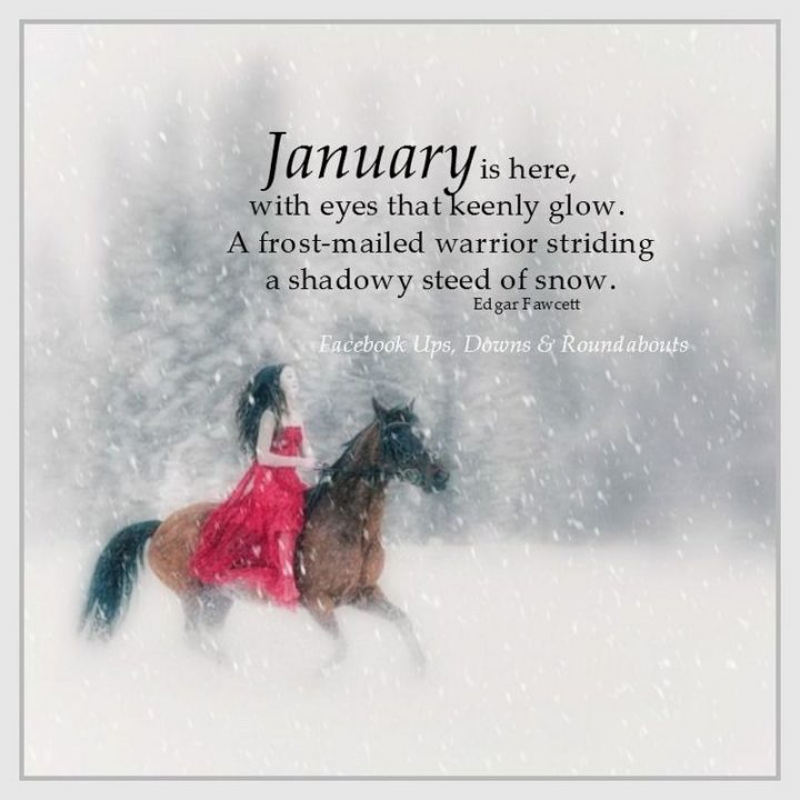"""""""January is here, with eyes that keenly glow, A frost-mailed warrior striding a shadowy steed of snow."""" - Edgar Fawcett"""