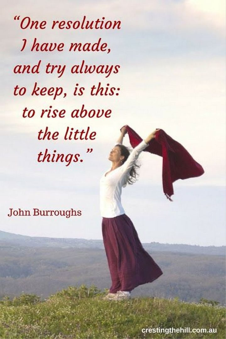 """""""One resolution I have made, and try always to keep, is this - to rise above the little things."""" - John Burroughs"""