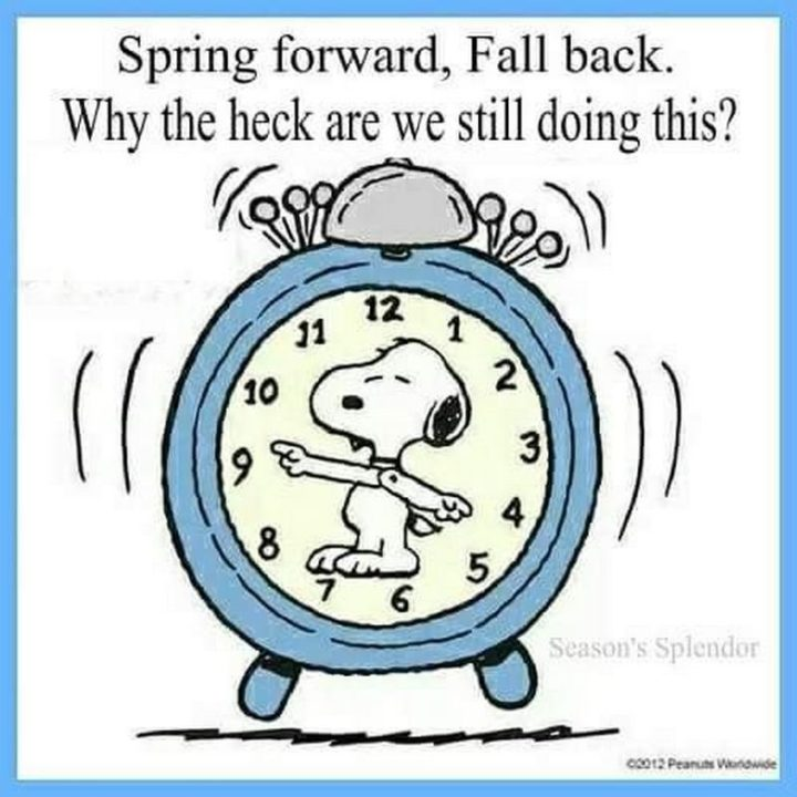 """""""Spring forward, fall back. Why the heck are we still doing this?"""""""