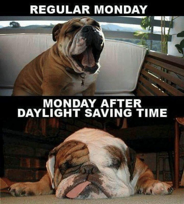 """Regular Monday VS Monday after daylight savings time."""