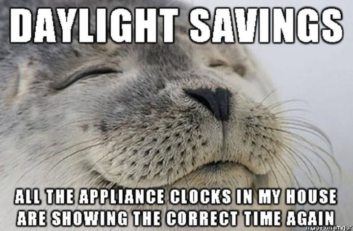 """""""Daylight savings. All the appliance clocks in my house are showing the correct time again."""""""
