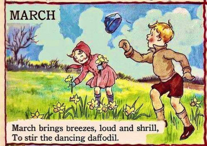 """""""March brings breezes, loud and shrill, To stir the dancing daffodil. - Sara Coleridge, The Garden Year"""