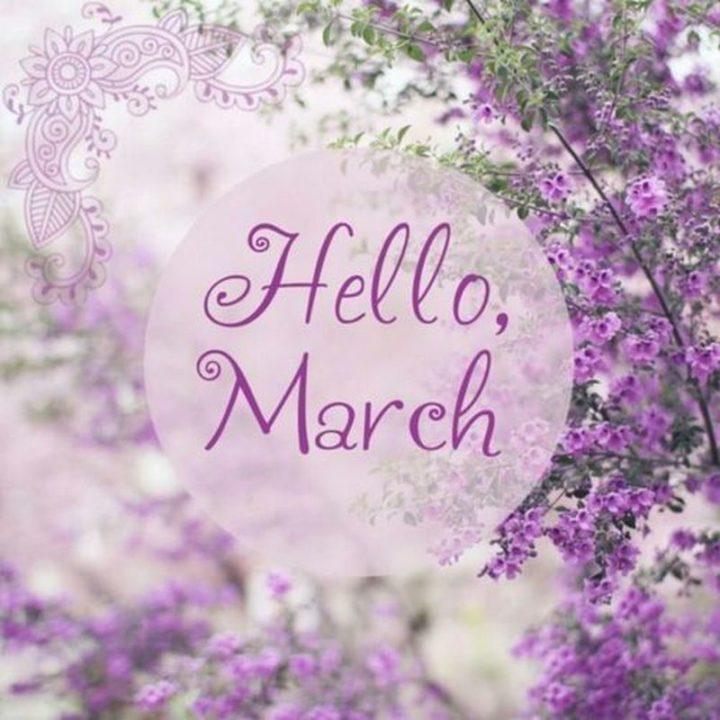 """""""Hello, March"""""""