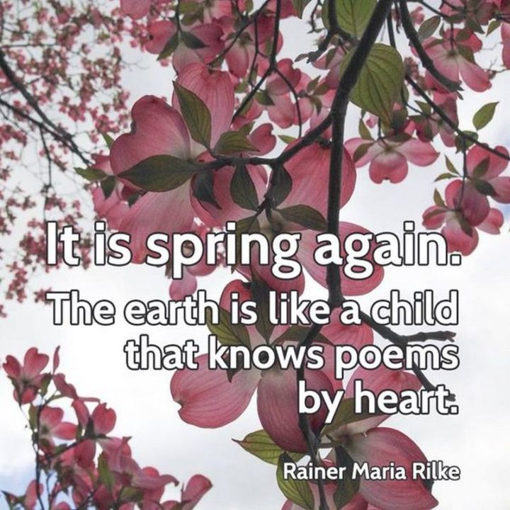 """""""It is spring again. the earth is like a child that knows poems by heart."""" - Rainer Maria Rilke"""