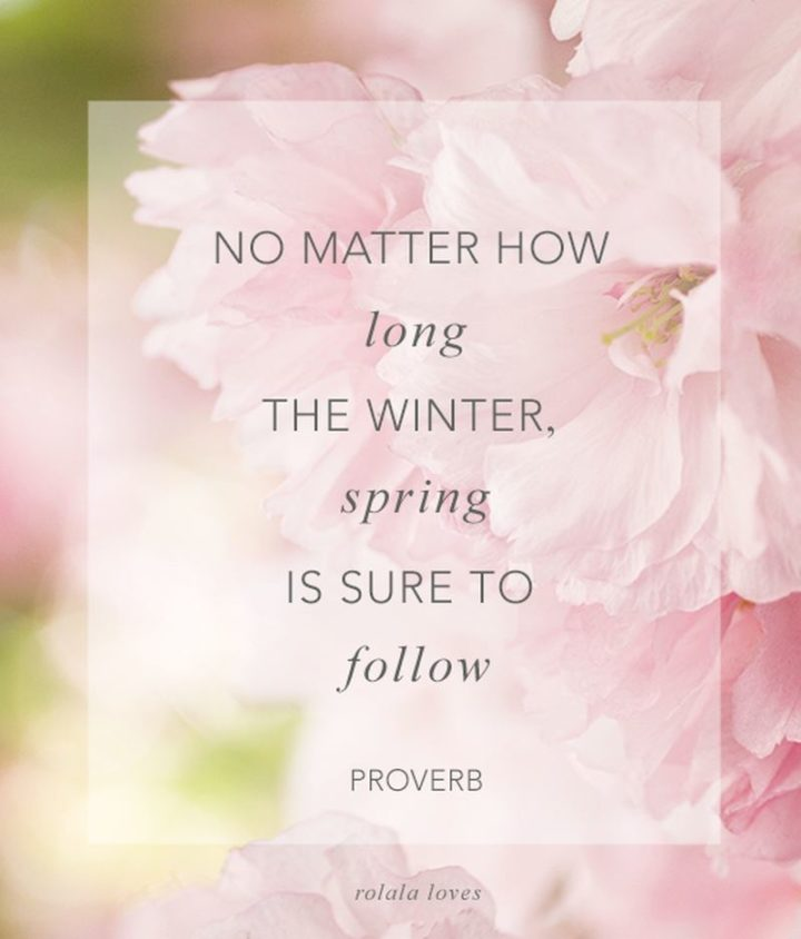 """""""No matter how long the winter, spring is sure to follow"""" - English proverb"""