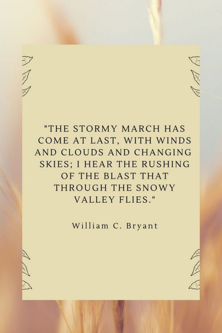 """""""The stormy March is come at last, With wind, and cloud, and changing skies, I hear the rushing of the blast, That through the snowy valley flies."""" - William C. Bryant"""