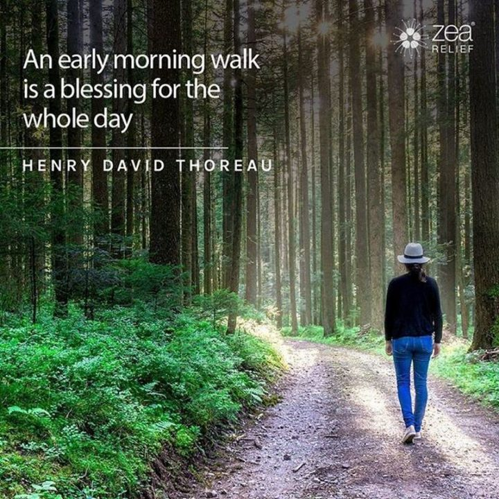 """""""An early-morning walk is a blessing for the whole day."""" - Henry David Thoreau"""