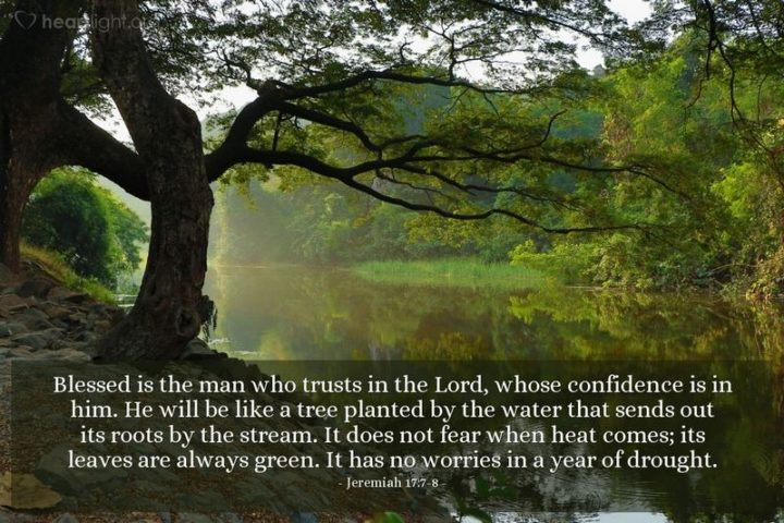 """""""Blessed is the man who trusts in the LORD, whose confidence is in him. He will be like a tree planted by the water that sends out its roots by the stream. It does not fear when heat comes; its leaves are always green. It has no worries in a year of drought."""" - Jeremiah 17:7-8"""