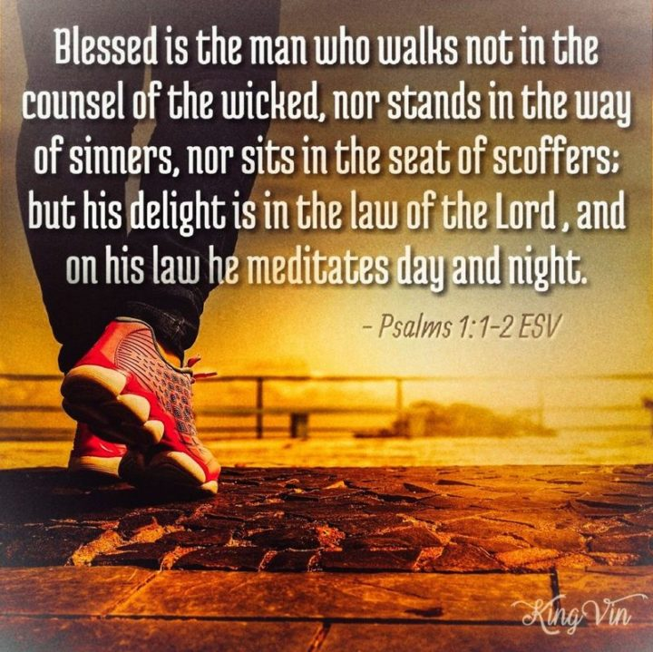 """""""Blessed is the man who walks not in the counsel of the wicked, nor stands in the way of sinners, nor sits in the seat of scoffers, but his delight is in the law of the Lord, and on his law, he meditates day and night."""" - Psalm 1:1-2"""