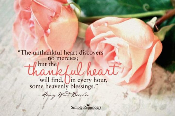"""""""The unthankful heart discovers no mercies, but the thankful heart will find, in every hour, some heavenly blessings."""" - Henry Ward Beecher"""