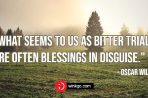43 Blessed Quotes to Help Appreciate the Blessings in Your Life.