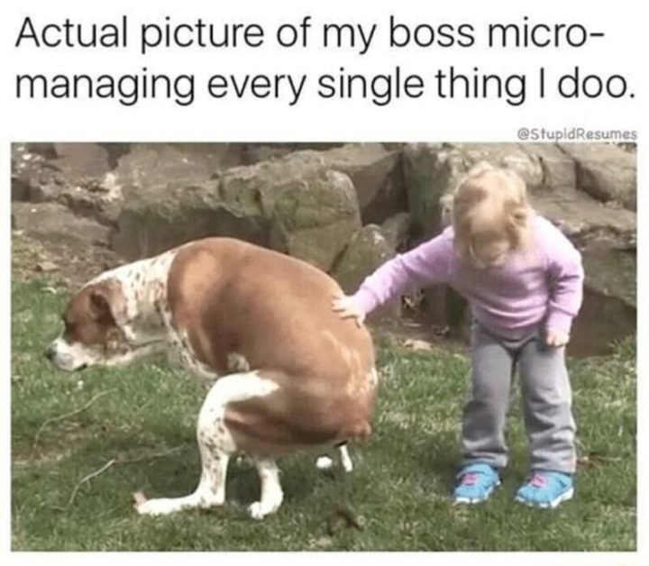 """Actual picture of my boss micro-managing every single thing I doo."""