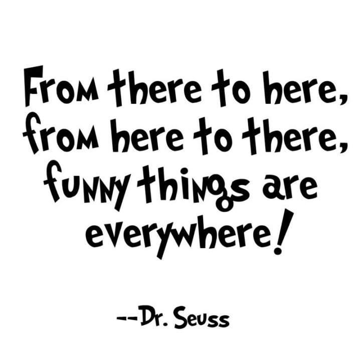 """""""From there to here, from here to there, funny things are everywhere!"""" - Dr. Seuss"""