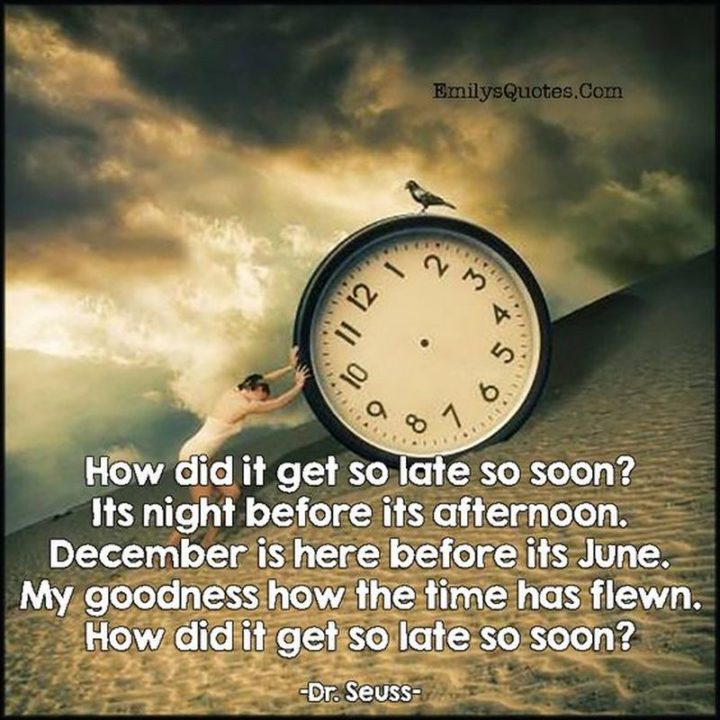 """""""How did it get so late so soon? It's night before it's afternoon. December is here before it's June. My goodness, how the time has flewn. How did it get so late so soon?"""" - Dr. Seuss"""
