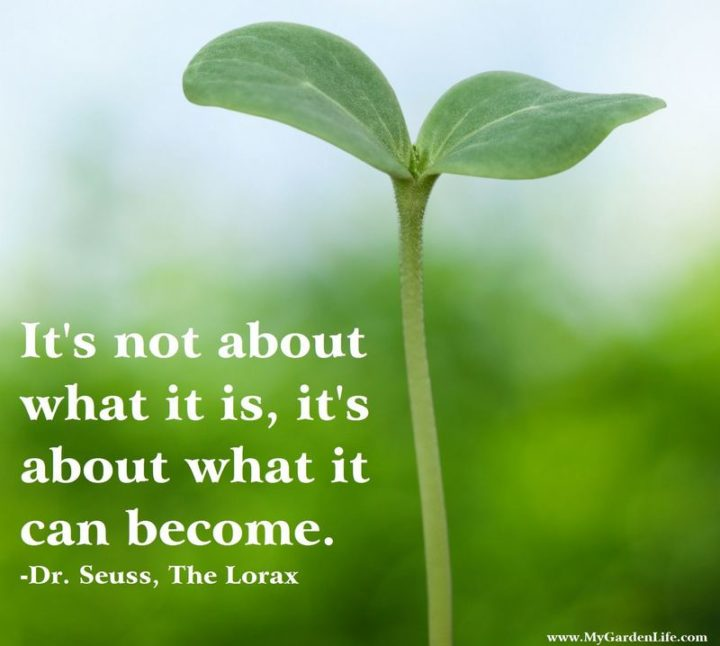 """""""It's not about what it is, it's about what it can become."""" - Dr. Seuss"""