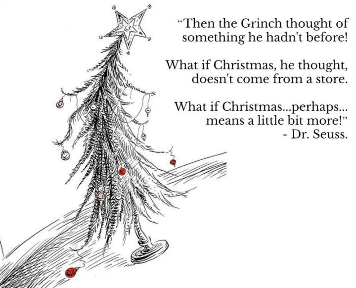"""""""Then the Grinch thought of something he hadn't before! What if Christmas, he thought, doesn't come from a store. What if Christmas...perhaps...means a little bit more!"""""""