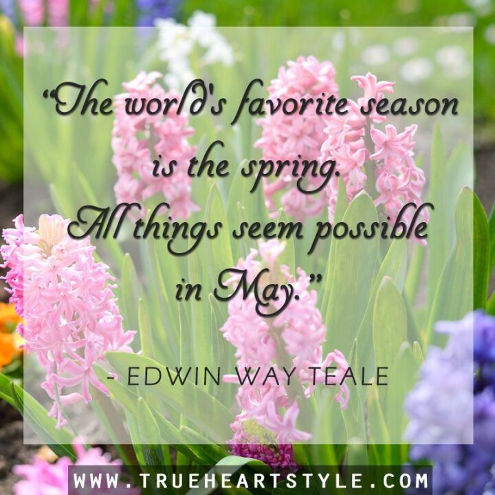 """37 Wholesome May Quotes - """"The world's favorite season is the spring. All things seem possible in May."""" - Edwin Way Teale"""