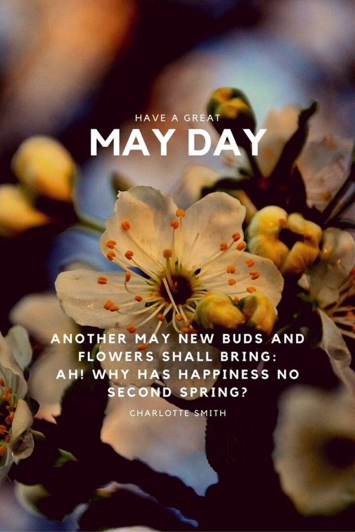 """37 Wholesome May Quotes - """"Another May new buds and flowers shall bring: Ah! why has happiness no second Spring?"""" - Charlotte Smith"""