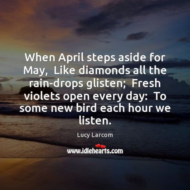 """37 Wholesome May Quotes - """"When April steps aside for May, Like diamonds all the rain-drops glisten; Fresh violets open every day; to some new bird each hour we listen."""" - Lucy Larcom"""