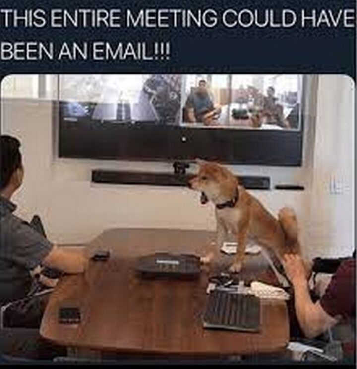 """39 Funny Meetings Memes - """"This entire meeting could have been an email!!!"""""""