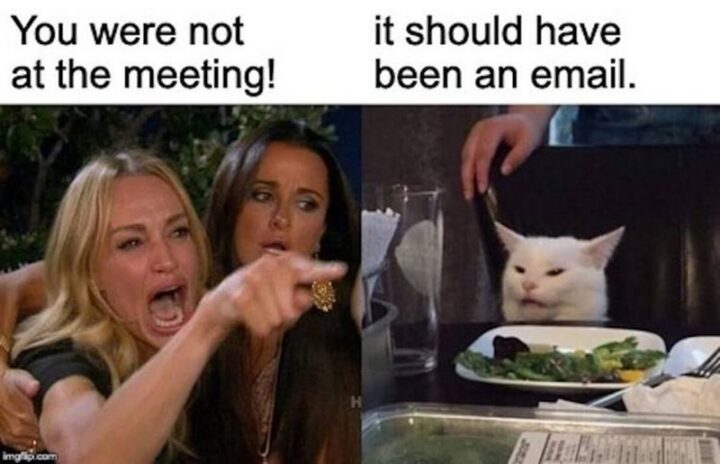 """""""You were not at the meeting! It should have been an email."""""""