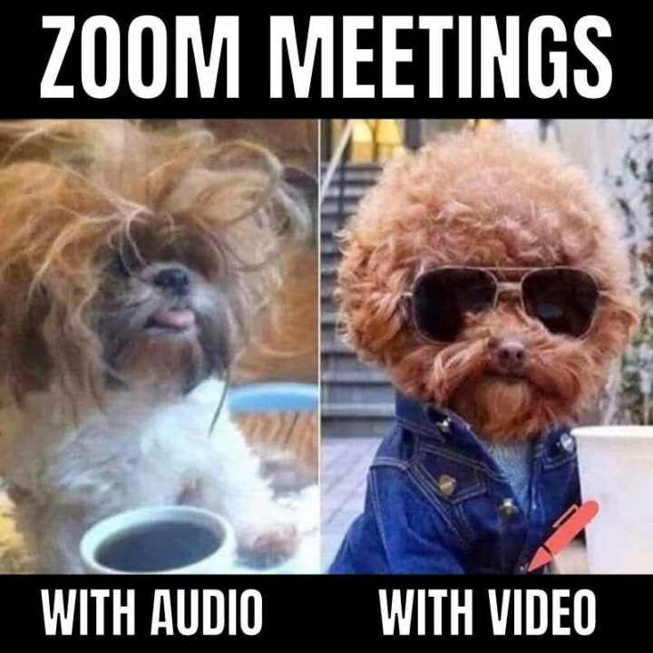 """""""Zoom meetings: With audio vs with video."""