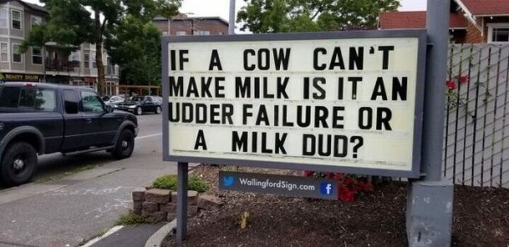 """27 Wallingford Signs - """"If a cow can't make milk is it an udder failure or a milk dud?"""""""