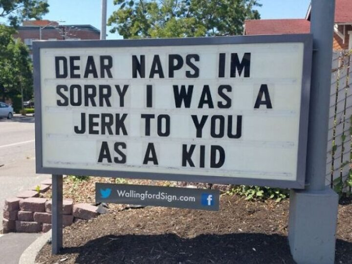 """27 Wallingford Signs - """"Dear naps, I'm sorry I was a jerk to you as a kid."""""""