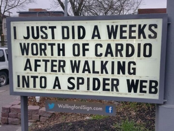 """""""I just did a weeks worth of cardio after walking into a spider web."""""""