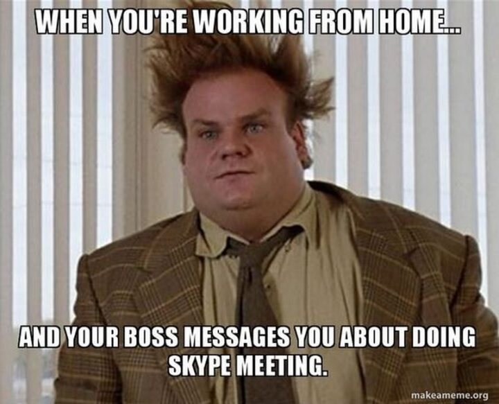 """""""When you're working from home...And your boss messages you about doing a Skype meeting."""""""