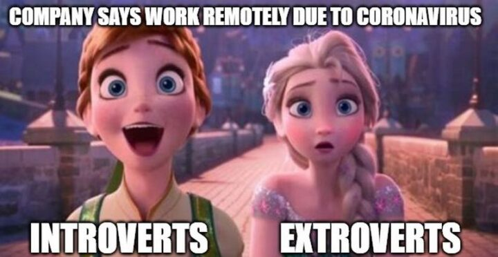 """31 Funny Working From Home Memes - """"Company says work remotely due to coronavirus. Introverts VS Extroverts."""""""