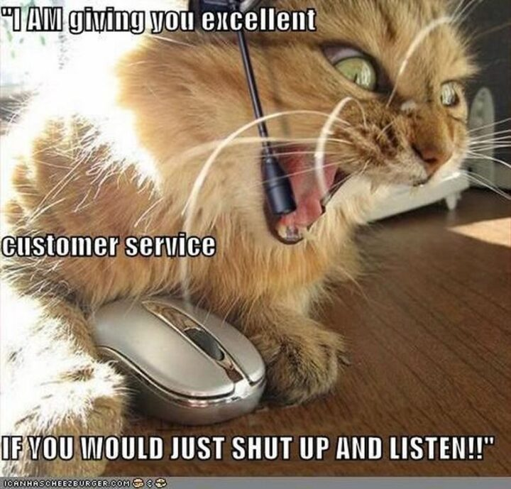 """""""I AM giving you excellent customer service. If you would just shut up and listen!!"""""""