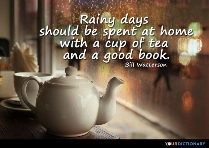 """""""Rainy days should be spent at home with a cup of tea and a good book."""" - Bill Patterson"""