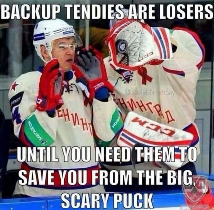 """75 Funny Hockey Memes - """"Backup tendies are losers until you need them to save you from the big scary puck."""""""