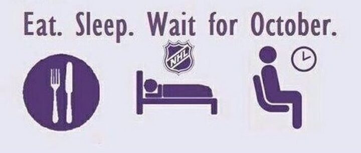 "75 Funny Hockey Memes - ""Eat. Sleep. Wait for October."""