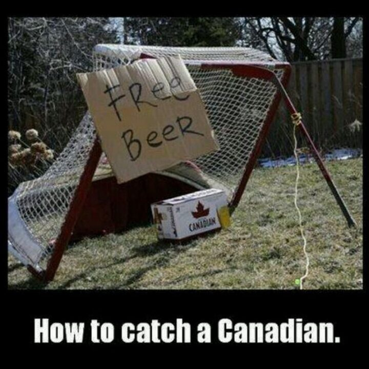 """""""How to catch a Canadian."""""""