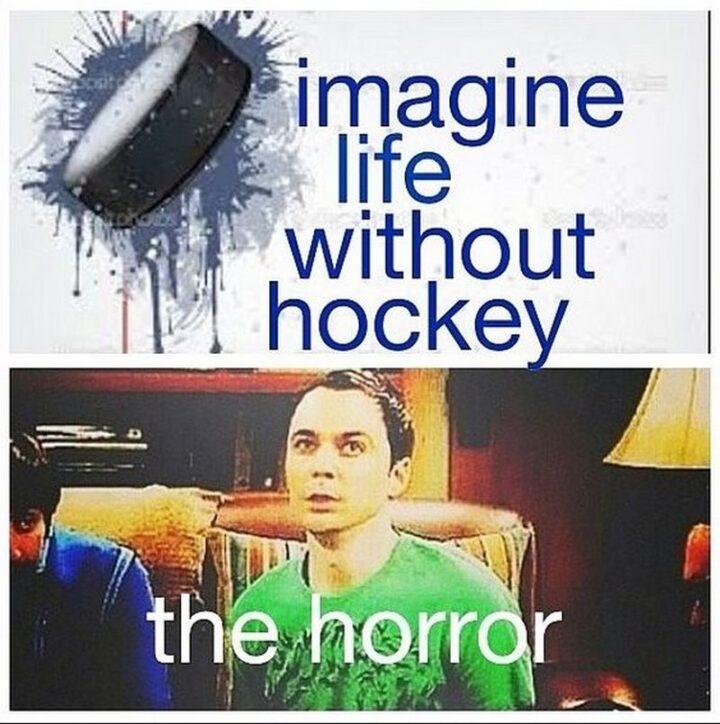 """Imagine life without hockey...The horror."""