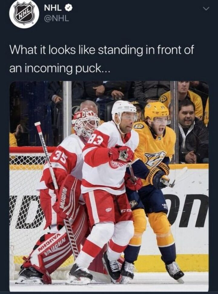 """""""What it looks like standing in front of an incoming puck."""""""