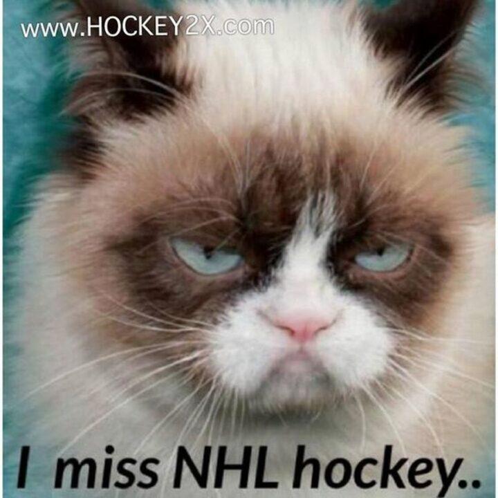 """""""I miss NHL hockey..."""""""